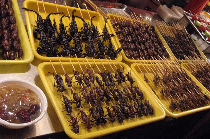 4-china bugs-flickr.jpg